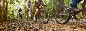 Mountain Bike Trails Durbanville banner