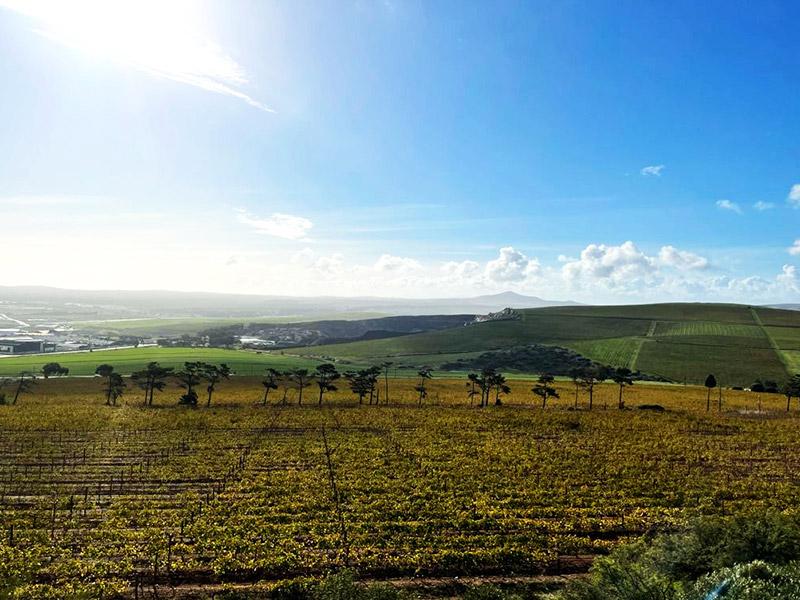 Tangram of Durbanville Hills Views